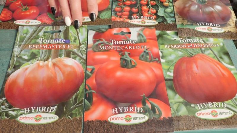 Cum se produc rasadurile de rosii si cum alegem semintele!
