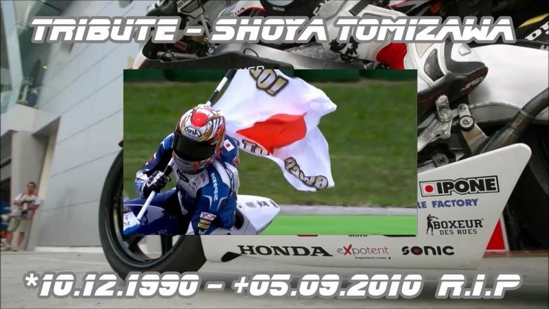 Tribute - Shoya Tomizawa