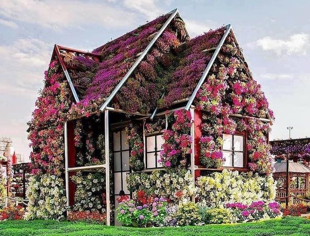 Цветущий домик (источник: gofazenda)