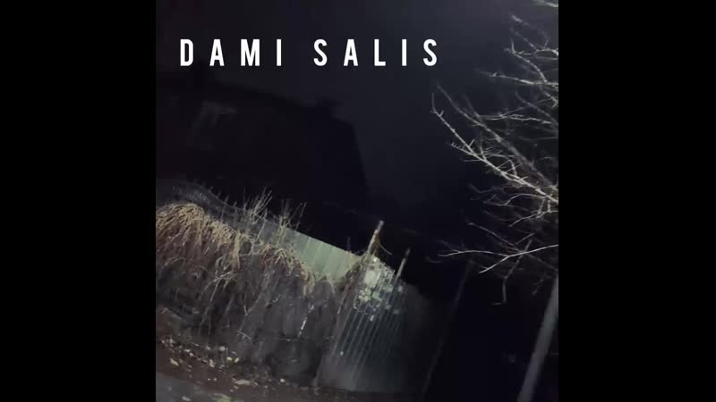 DamI Salis Ход мыслей