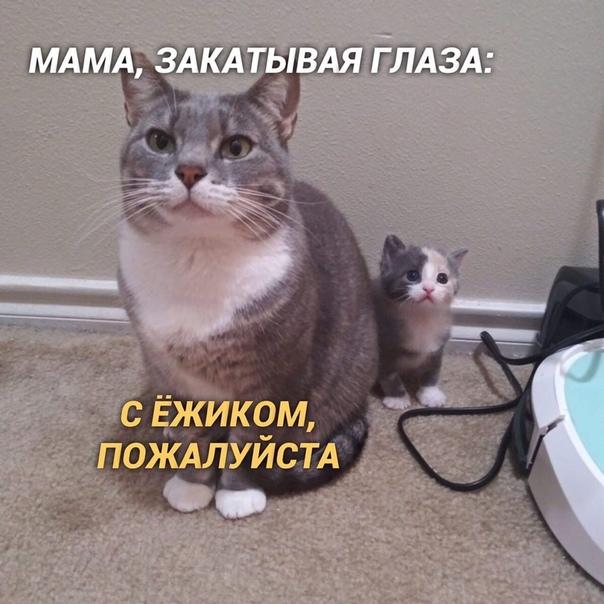 Саша, 21 годик