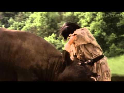 Чой Бай Дао бой с быком В фильме воин ветра