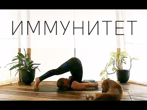 Йога для Иммунитета 35 мин Асаны 15 мин Пранаяма 10 мин Медитация Yoga with Dasha from Russia