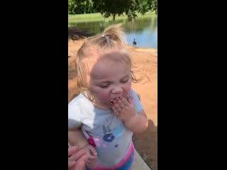 Когда взяли ребёнка в парк, чтобы покормить птиц, но что-то пошло не так...