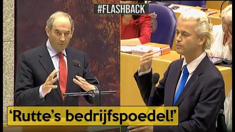 Wilders(PVV) v Cohen(PvdA) U bent de bedrijfspoedel van Rutte I | Flashback | Politiek - YouTube