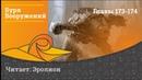 Tempest of the Battlefield / Буря Вооружений - Главы 173-174. Озвучка от Erolion