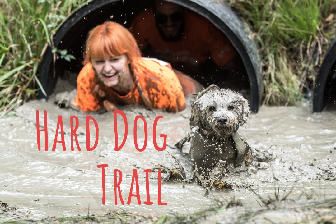 """Афиша Самара """"Hard Dog Trail"""" Самара. Контрольная тренировка"""