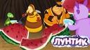 Лунтик День арбуза 🍉🍉🍉 Сборник мультфильмов для детей