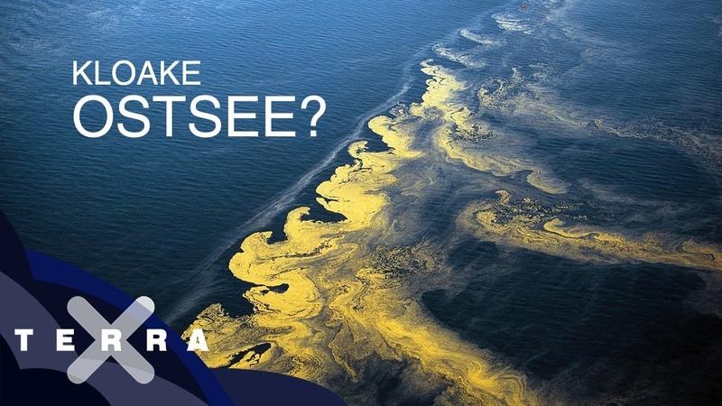 Ist die Ostsee noch zu retten Dirk Steffens