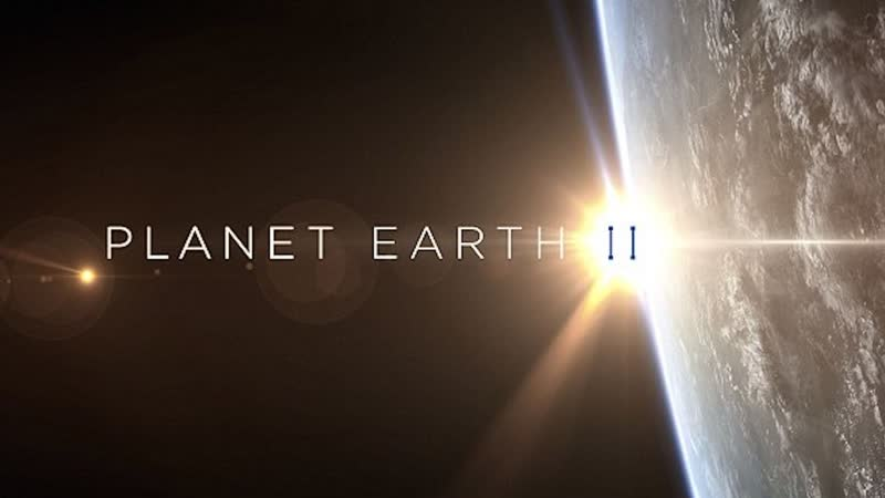 BBC. Планета Земля 2 2016 г. - Научно-познавательный - Города