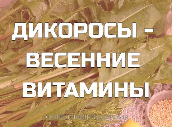 ДИКОРОСЫ - ВЕСЕННИЕ ВИТАМИНЫ