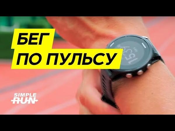 Пульсовые зоны в тренировках по бегу.