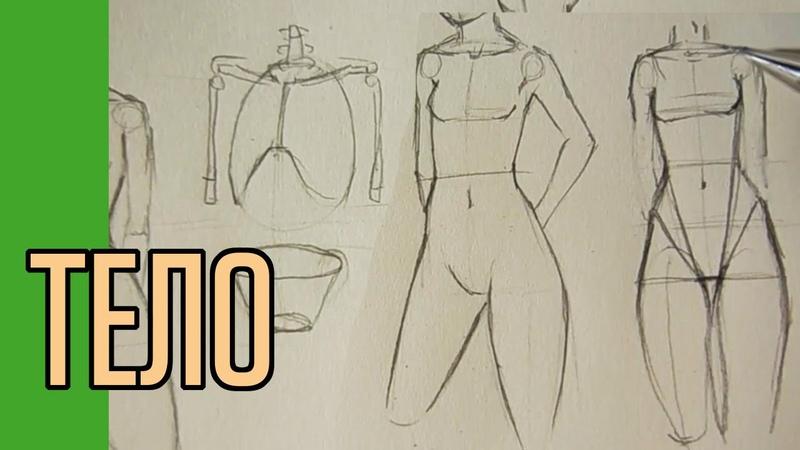 Как нарисовать тело Полный вариант
