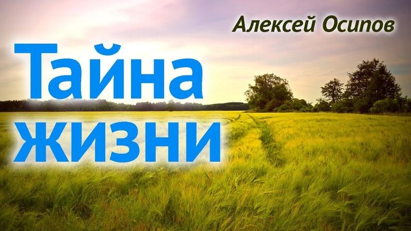 Жизнь, зачем ты мне дана? (г. Пушкино, 04.04.2019) — А.И. Осипов