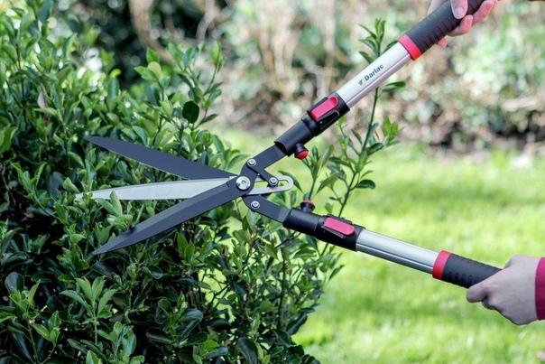 Выбираем секатор для садовых работ. Когда вы приходите в магазин, то видите перед собой, большое разнообразие садовых инструментов. И сделать правильный выбор, порою не так просто. Садовые