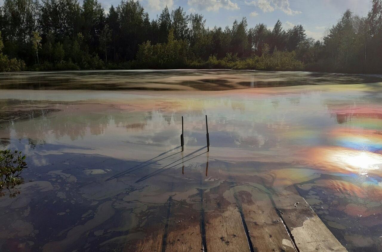 Свидетелей загрязнения водоема «радугой» ищут в Дмитровском округе