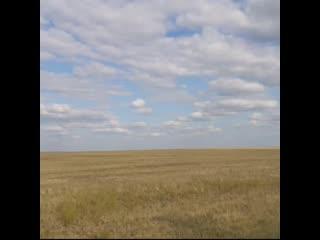 Гроза в степи - Варя Шапченко