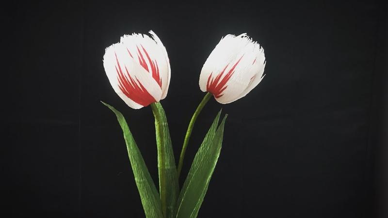 Bell's CraftHow to make Parrot Tulips by crepe paperHướng dẫn làm hoa tulip tia bằng giấy nhún