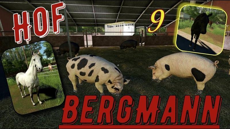 Farming Simulator 19. FS 19. Карта HOF BERGMANN MAP V1.0.0.4 ПОСЕЕМ , А ПОТОМ ВСЁ ОСТАЛЬНОЕ! №9