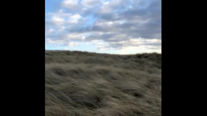 Видео Мэтт Робертс 15.01.20 смотреть онлайн