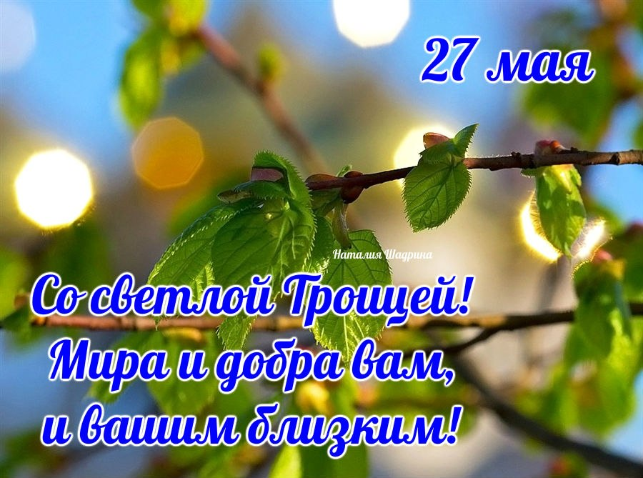 От души поздравляю с чудесным праздником Троицы и хочу пожелать, чтобы в поле твоей жизни яркими красками простирались цветы счастья и зелень надежд.