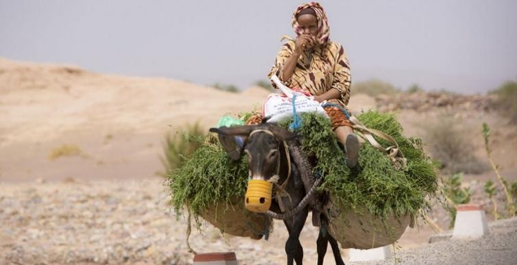 Национальные табу или чего нельзя делать в Марокко, изображение №5