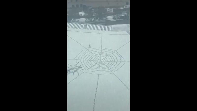 Найден настоящий человек паук
