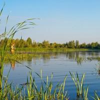 Рыболов Владимир