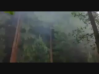Вот такой заборчик можно наблюдать в Барвихе
