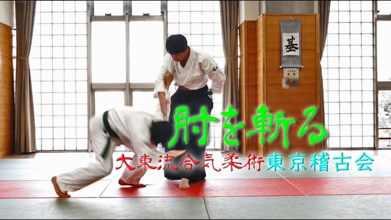 東京稽古会291 肘を斬る 大東流合気柔術