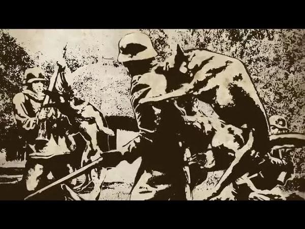 Лобовая Атака Пограничников с Собаками на Немцев Ваффен СС в Июне 1941 Великая Отечественная Война