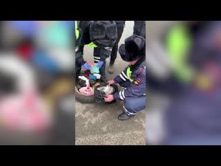 В Казани задержаны жители Новосибирска с наркотиками