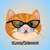 Кот-Secret © Кошки и их люди