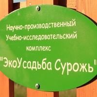 "Логотип Экоусадьба ""Сурожь"""