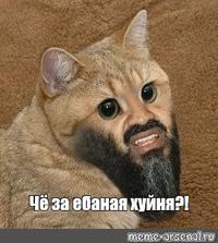 Nikolay  Khavronich
