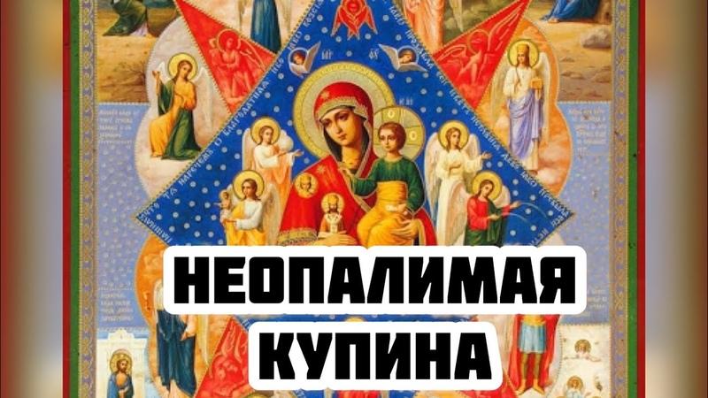 Редкая чудотворная икона Богородицы Неопалимая Купина Чудеса История описание значение иконы