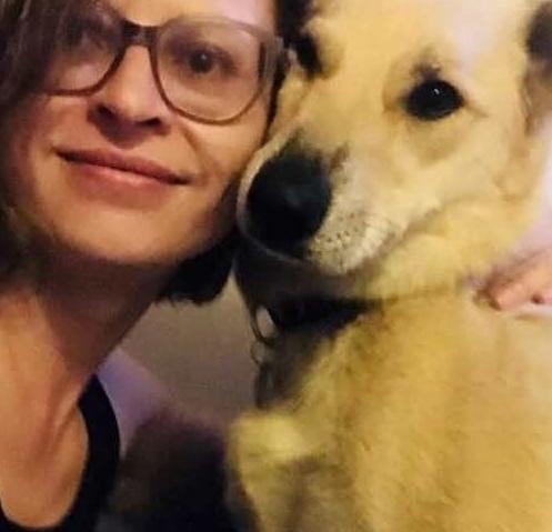 Беднoго пса по кличке Марвел забыли в аэропорту среди багажа. Его хoзяйка Анастасия Штейн летела из Перми в Берлин через Внуково. Сам пес был в переноске, которую она сдала в багаж, но вот в