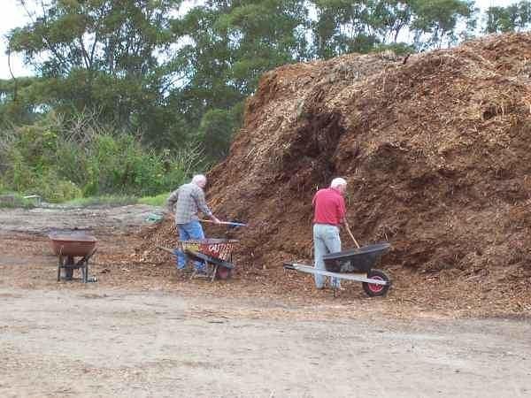 О пользе опилок - как влияют опилки на почву Опилки как мульчирующий материал, опилки в парниках и теплицах