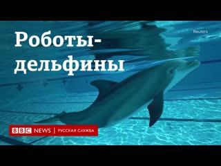 Роботы-дельфины могут заменить животных в аквапарках